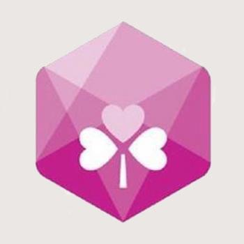 ni2012 logo